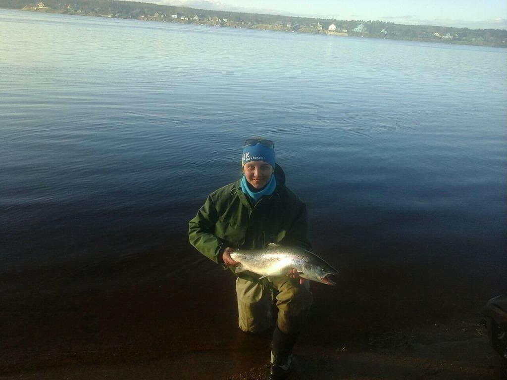 рыбалка, семга